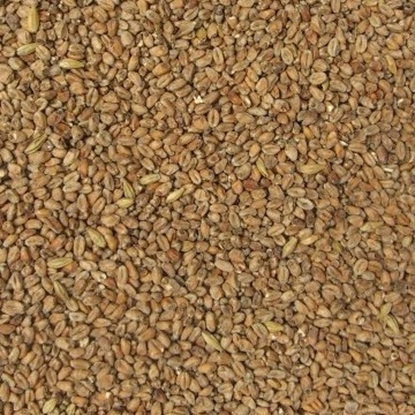 Picture of Wheat Malt Dark (Weyermann)