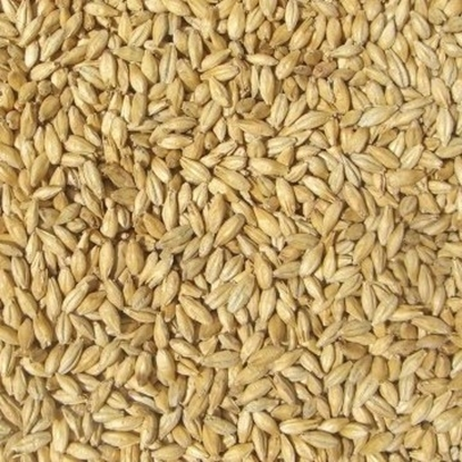 Picture of Pilsner Pale Malt (Barrett Burston)