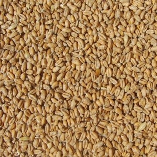 Picture of Wheat Malt Pale (Weyermann)