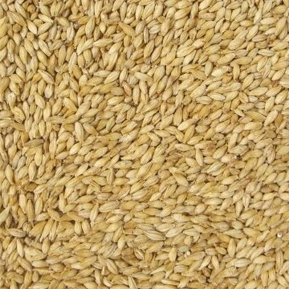 Picture of Pilsner Malt (Weyermann)