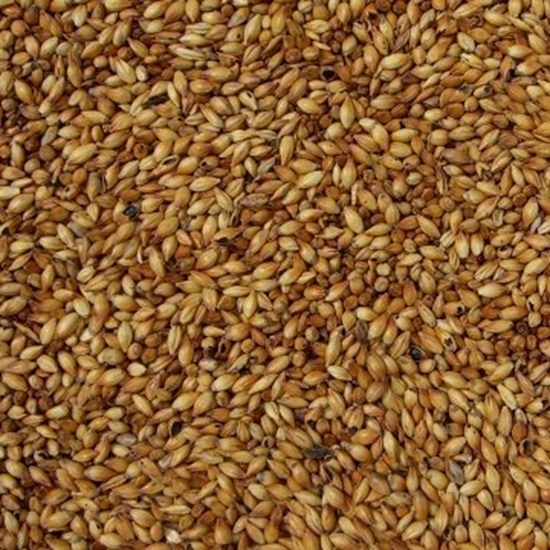 Picture of Crystal Malt Dark (Bairds)