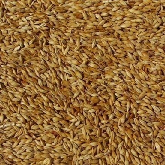 Picture of Abbey Malt - (Weyermann)