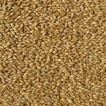 Picture of Smoked Malt (Weyermann)