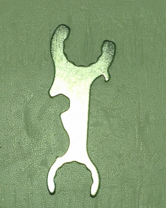 Picture of Tap Spanner 5 in 1 KK