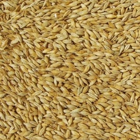 Picture of Carapils Malt (Weyermann)