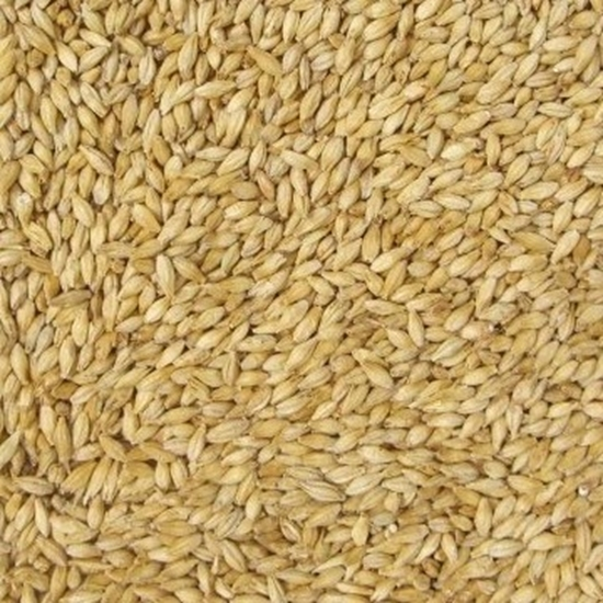 Picture of Pilsner (Bohemian) - Floor Malted) Malt (Weyermann)