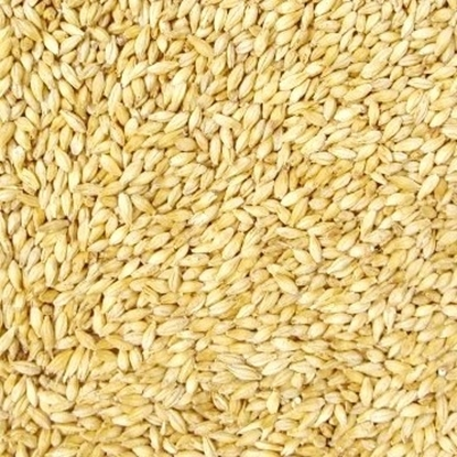 Picture of Premium Pilsner Malt (Weyermann)