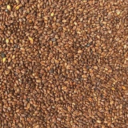 Picture of Wheat Caramel Malt (Weyermann)