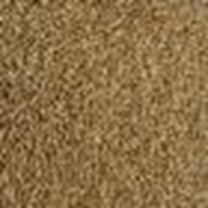 Picture of American Ale Malt (Gladfield) AMERICAN ALE